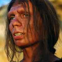 Homo erectus vs homo sapien